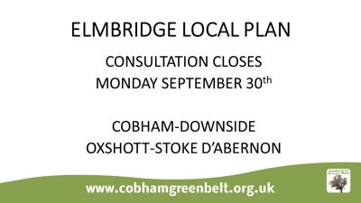 Cobham Green Belt Group Public Meeting 19 Sept 2019
